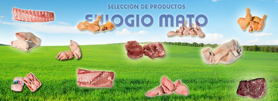 banner_productos